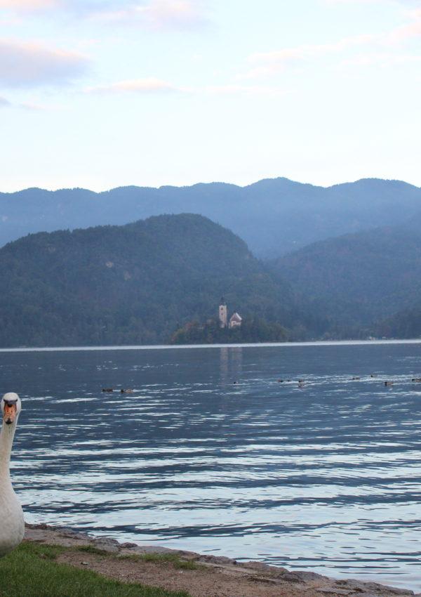 Cosa vedere a Bled: la mia top 5