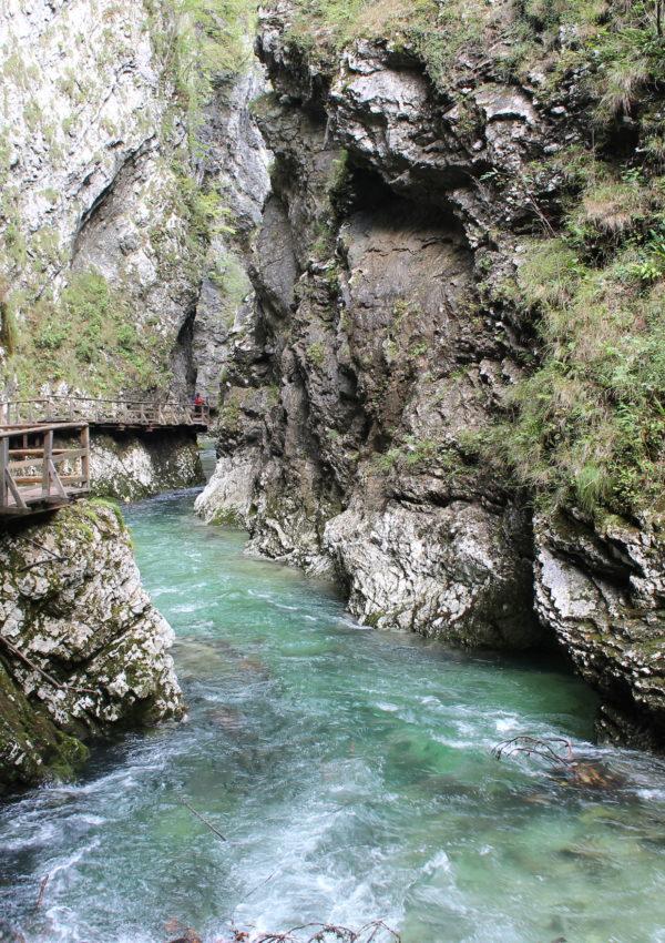 Le gole di Vintgar: un'escursione naturalistica nei dintorni di Bled