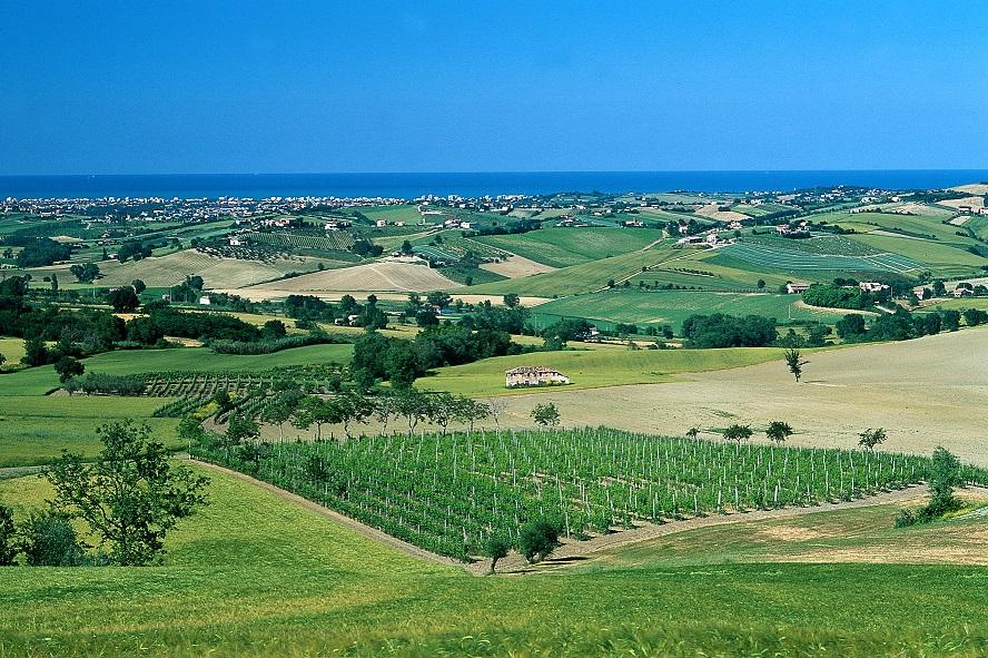paesaggio5