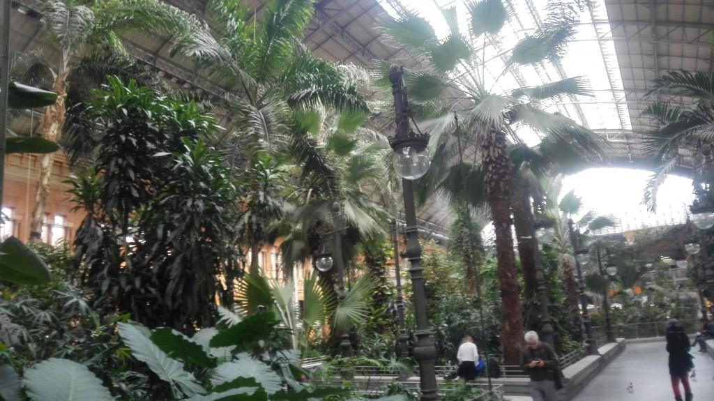 Oasi Verde, Stazione di Atocha