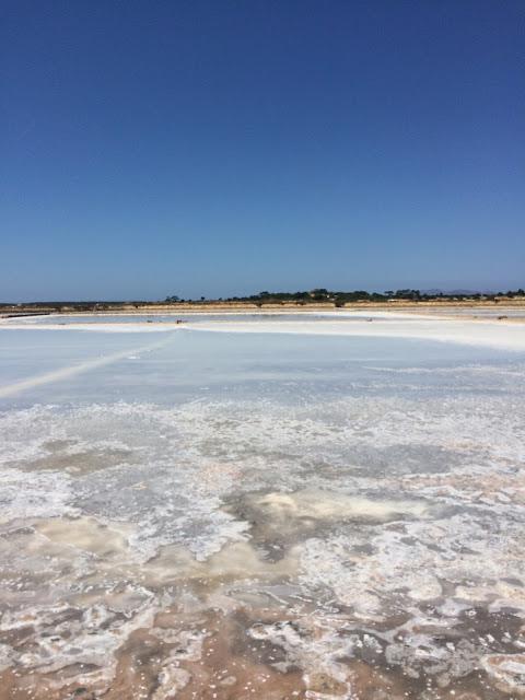 saline di trapani il sale che emerge