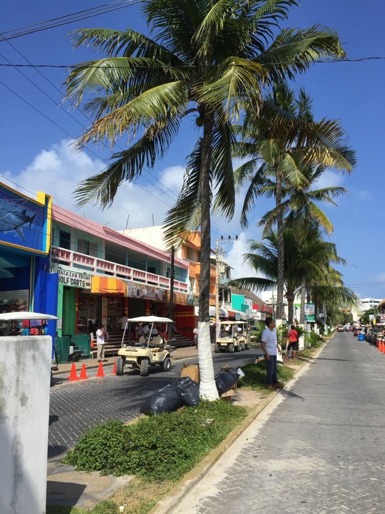 isla mujeres palme