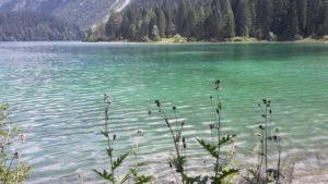 lago di tovel acque verdi