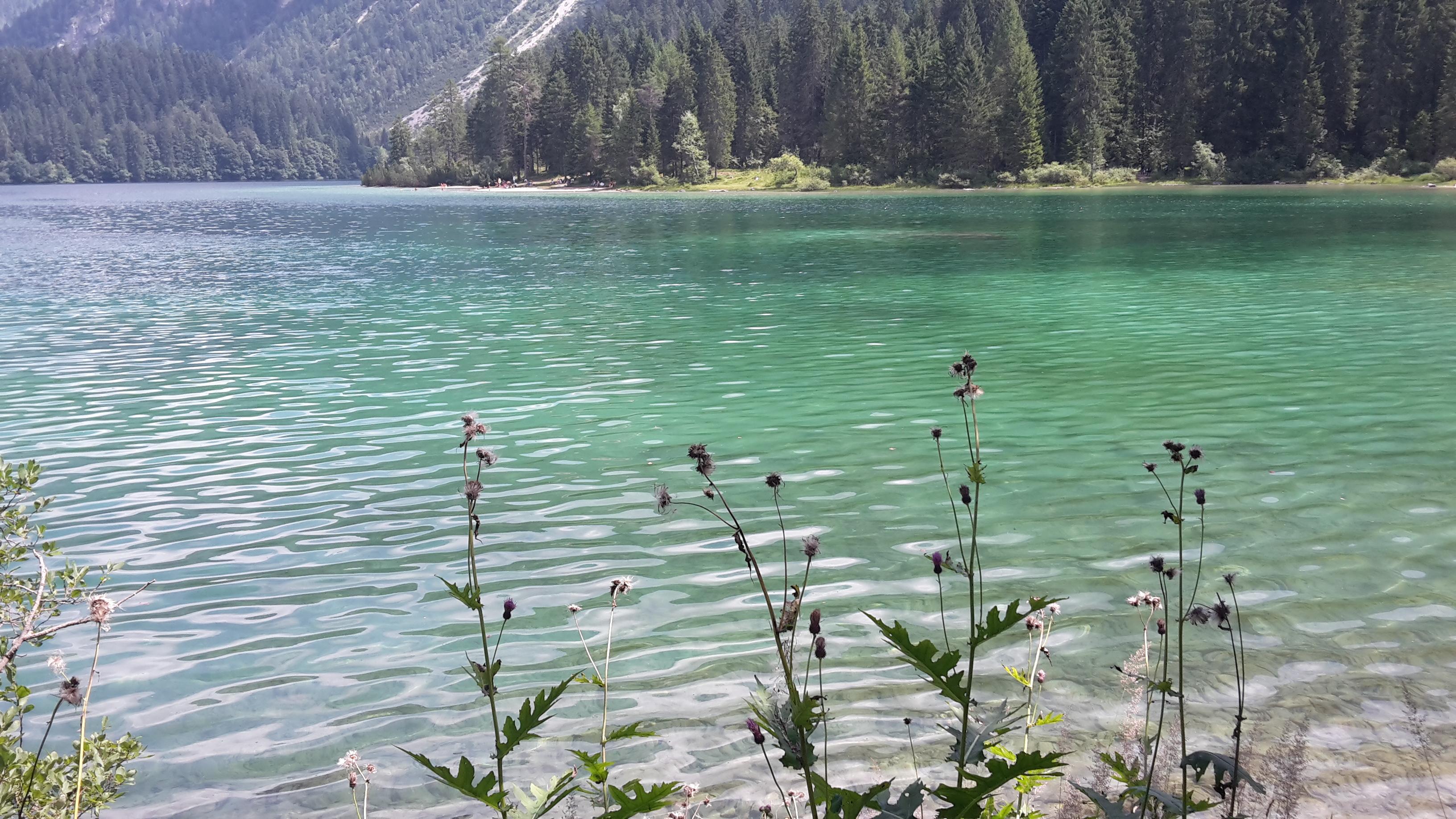 5 passeggiate facili da fare in Val di Non