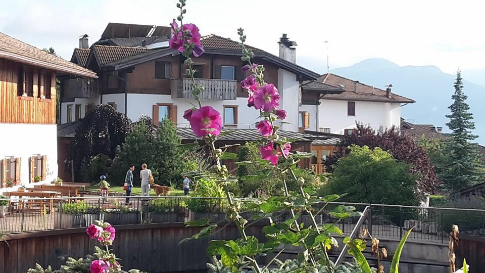 pineta hotels piazza