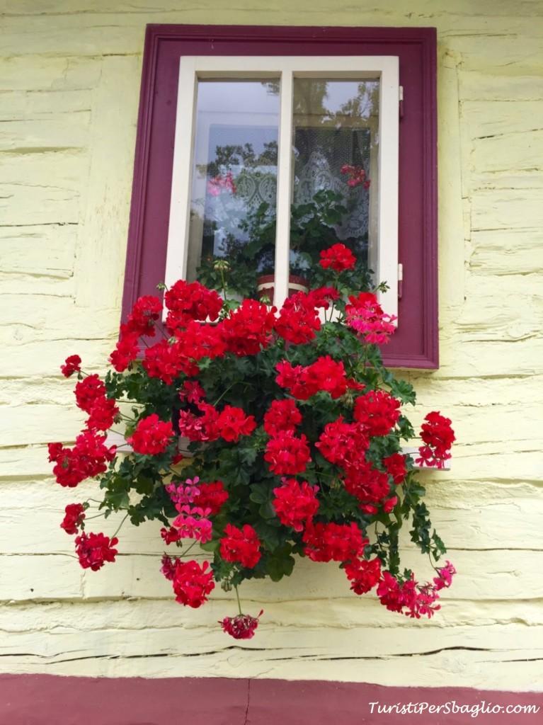 fiori slovacchia