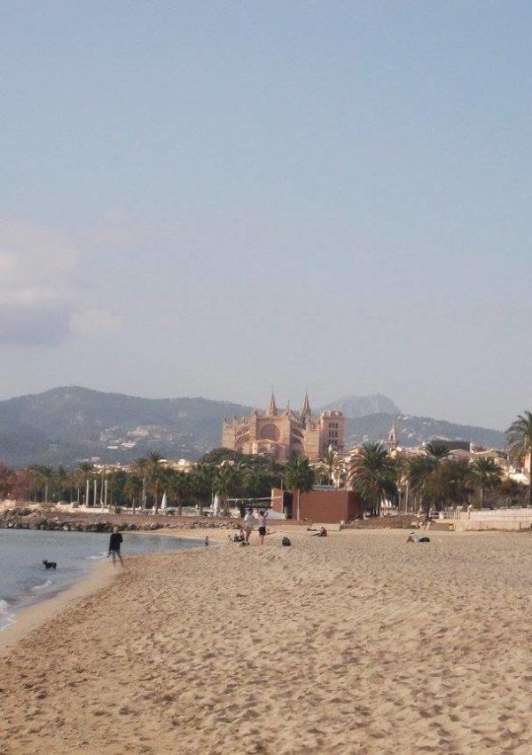 Palma di Maiorca in inverno: perché andare e cosa vedere e fare
