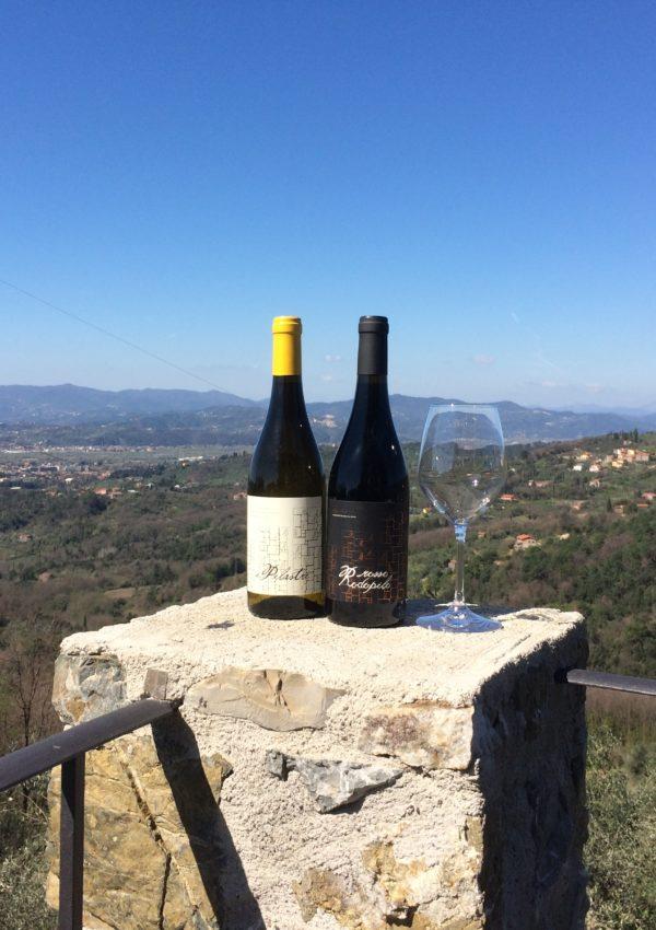Benvenuto Vermentino: le tradizioni vitivinicole e gastronomiche della terra dei Luni