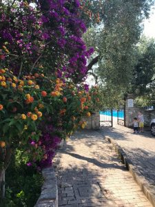 accesso alla piscina albergo il giardino
