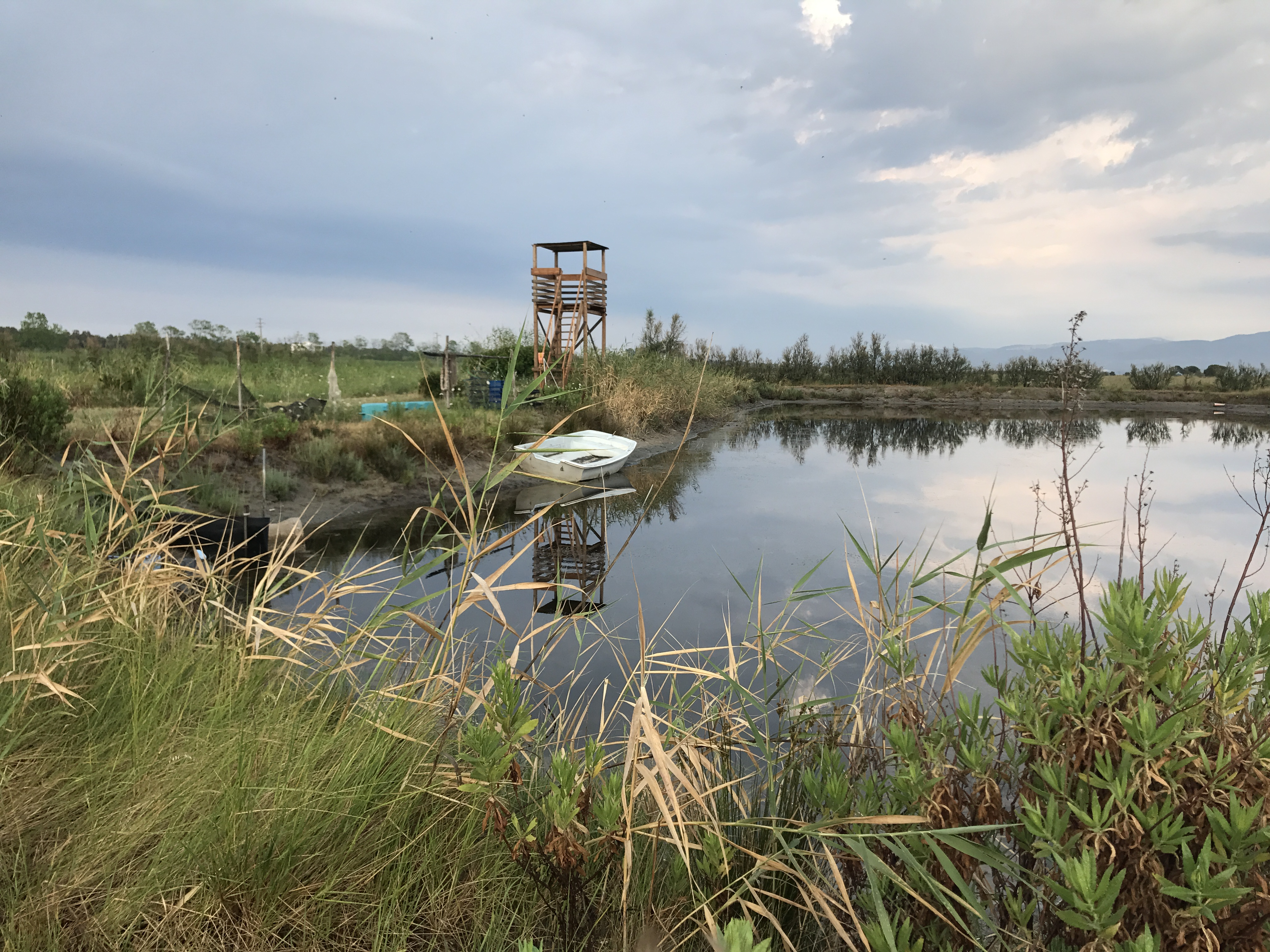 torretta di avvistamento oasi gargamelle lago di varano