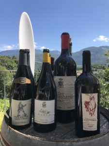 casa del vino della vallagarina veduta