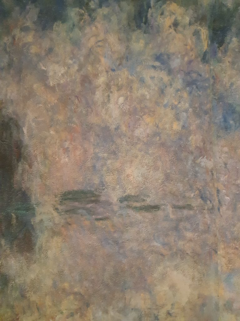 le ninfee di Monet all'orangerie di parigi