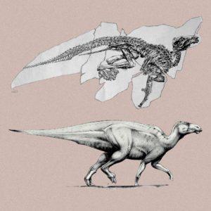 dinosauro italiano