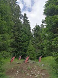 foresta dei draghi in val di fiemme