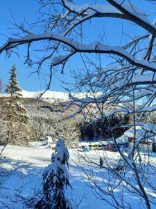 abetone nella neve