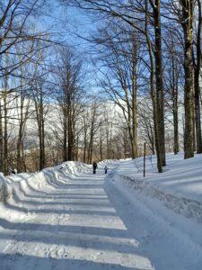 strada di neve